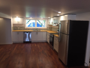 Large 1 bed + 1 den New Suite in Rockland