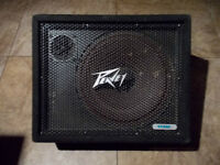 Peavey and Cerwin Vega 112M 80 Watts 8 Ohm Passive Wedge Monitor