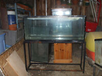 55 GAL. FISH TANK WITH A  METAL STAND FOR SALE