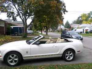 Ford Mustang   reduced price