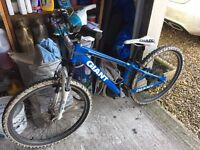 GIANT mountain bike aged 7yrs+ approx