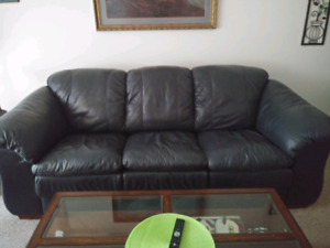Ieather sofa and love seat