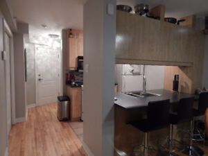 4.5 Condo Available Dec 1 (St Henri - Atwater - Little Burgundy)