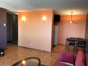 Downtown high rise one bedroom condo for rent