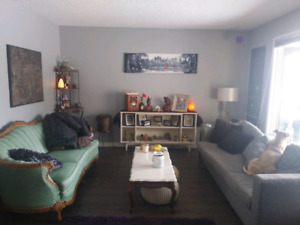 Room for Rent with Own Living Room!