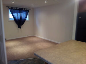 Two Bedroom Basement Suite with Garage Available January 1 Regina Regina Area image 3