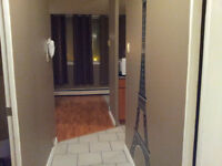 Furnished One Bedroom Bachelor -  From $398 Weekly