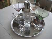12 Piece Martini Set