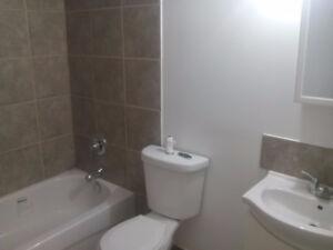 3 Bedroom Basement Suite