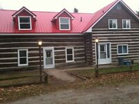 care and maintence for your log home or cottage