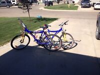 Selling two bicycles