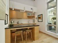 1 Bed and Den Condo in the Historic Downtown Hudson Building
