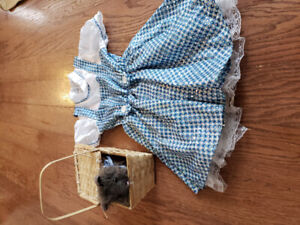 Girls Dorothy Halloween Costume with Toto Basket