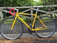 Genesis day one fixie bike