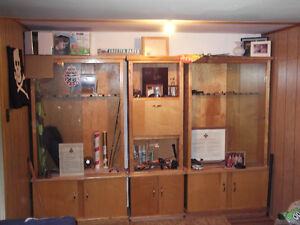 Display case. Could also be used as trophy case.