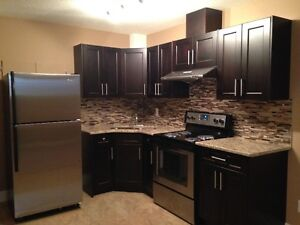 EXECUTIVE NEW 02 BED ROOMS BASEMENT AVAILABLE IMMEDIATELY!