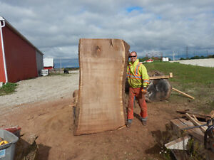 Live edge lumber Kitchener / Waterloo Kitchener Area image 1