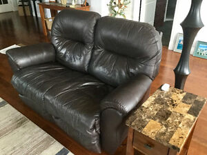 Power Recliner Love Seat