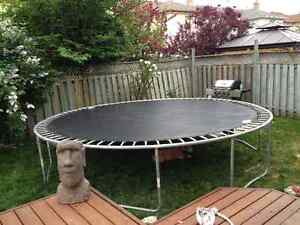 Trampoline, 14 inches