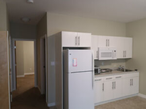 One bedroom suite for rent in Whistle Bend