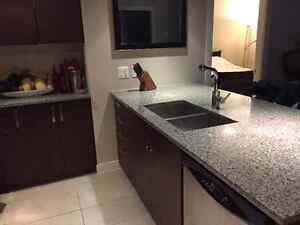 Renovated 2 bedroom/2 bath condo