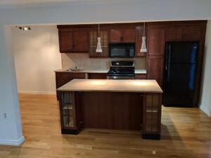 Armoire et Ilot de cuisine fini acajou avec grand tiroir.