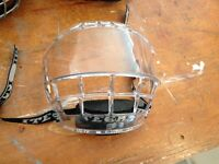 Visor/face cage