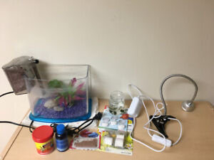 1 gallon fish tank and accessories