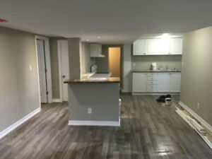 2 Bedroom Fully Renovated Private Lower Unit - Safe & Legal