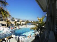 March in Florida? 1 Bedroom Condo in Indian Shores, Fla