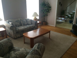 1 Large Bedroom Available - Humber College North
