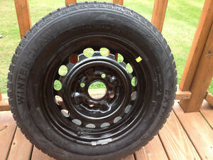 4 Winter Claw Extreme Grip Tires on rims