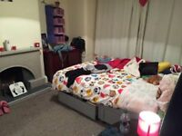 1 Bed room available, close to transport,easy accses to university, city centre, shops, supermarkets