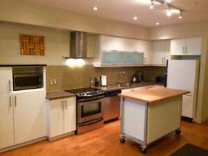 Downtown 1 Bed 1 Bath condo for rent available September 1st