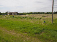 Building Lot in Lorette - Residential
