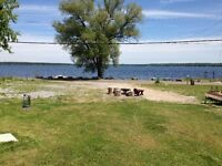 Waterfront cabins for rent for the whole summer