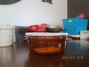 Tupperware Steam Cooker With Lid