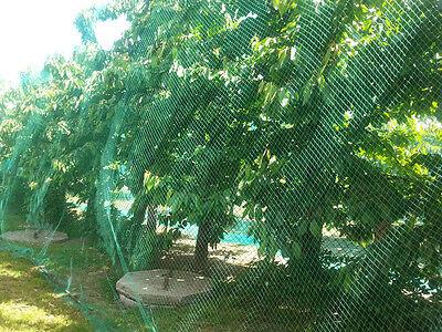 Vogelschutznetz 5 x 10 m Laubschutznetz Gartennetz Teichnetz Obstbaumnetz