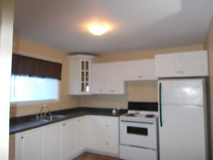Beautiful Large RENOVATED one bedroom Apartment