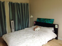 1 bedroom in Mile End close to Metro Laurier
