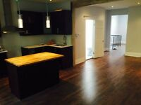 Newly Renoed 2 bedroom , 2 balcony with laundry open concept