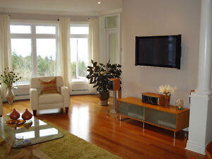 2 Bedroom Luxury Condo for long term lease