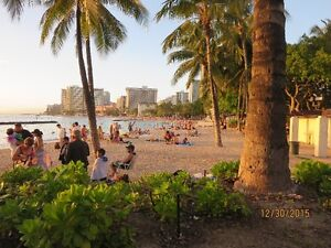 ONE BLOCK FROM WAIKIKI BEACH