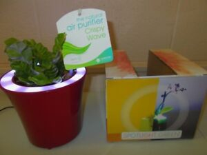 SPOTLIGHT GREEN 10X12 PLANTER POT