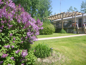 BEAUTIFUL ACERAGE NEAR GULL LAKE AND RIMBY FOR SALE