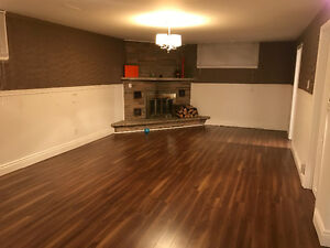 Beautifully newly renovated 1 bedroom basement