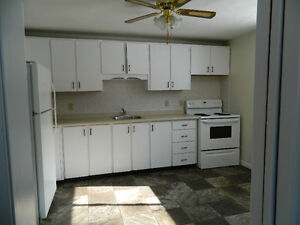 1 bedroom apartment for rent in Lindsay