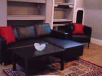 Furnished One-Bedroom Apartment with Den- Military IR, RMC, Stud