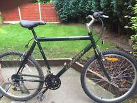 adults liberty nebraska mountain bike hardly used