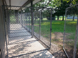 Birchview Dog Boarding - 30 mins from south end of Cambridge Cambridge Kitchener Area image 2